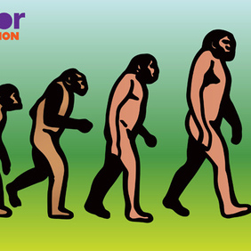 Evolution - Free vector #219625