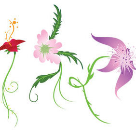 Three Floral Vectors - Free vector #221285