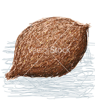 Free false durian nut whole vector - Free vector #233545