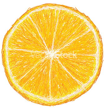 Free unique style of orange fruit cross section closeup vector - бесплатный vector #233755