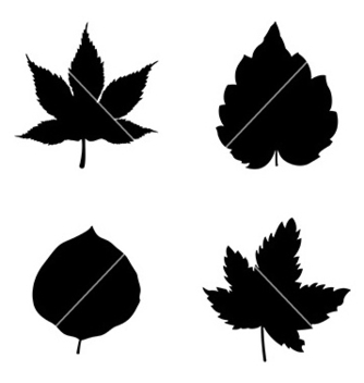 Free icon set of leaves vector - Kostenloses vector #234805