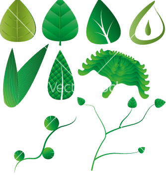 Free leaf leaves collection vector - vector gratuit #234895