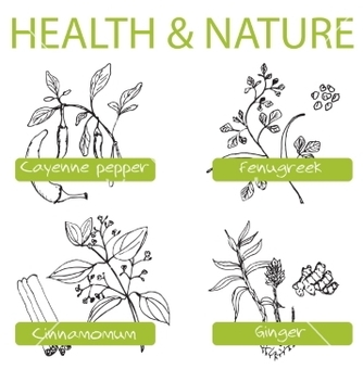 Free handdrawn set health and nature collection of vector - vector #236005 gratis