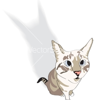 Free sitting domestic cat vector - vector gratuit #236315