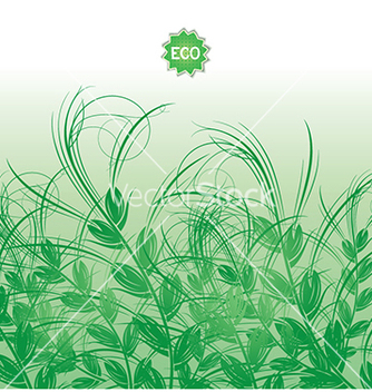 Free background with green grass ears of corn vector - vector gratuit #237455
