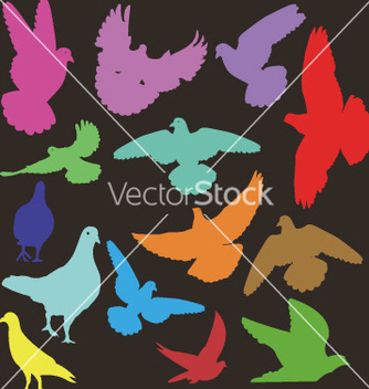 Free pigeon 1 vector - Free vector #237995