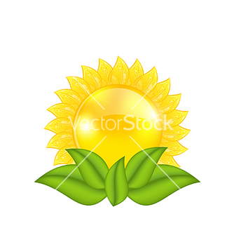 Free abstract sun with green leaves isolated on white vector - Free vector #238325