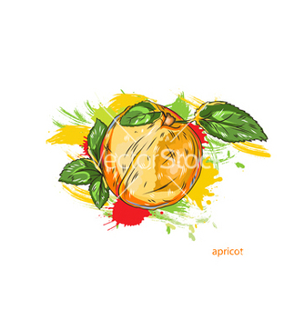 Free apricot with colorful splashes vector - Kostenloses vector #243235