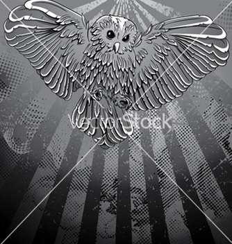 Free owl with grunge background vector - vector gratuit #265225