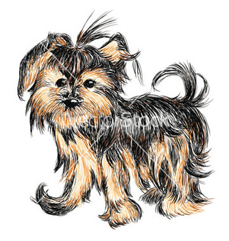 Free yorkshire terrier puppy vector - бесплатный vector #266865