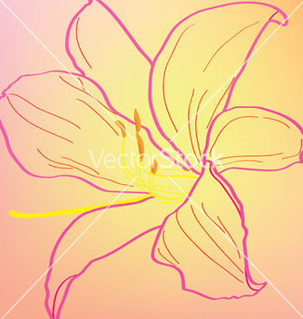 Free silhouette of an abstract pink lily vector - бесплатный vector #267405