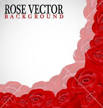 Free rose corner background vector - Kostenloses vector #267675