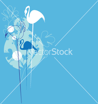 Free exotic birds vector - Free vector #270325