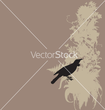 Free tui and native bush vector - vector gratuit #270995