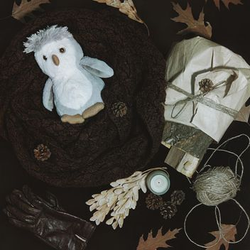 Warm scarf, gloves and dry leaves - image gratuit #272225