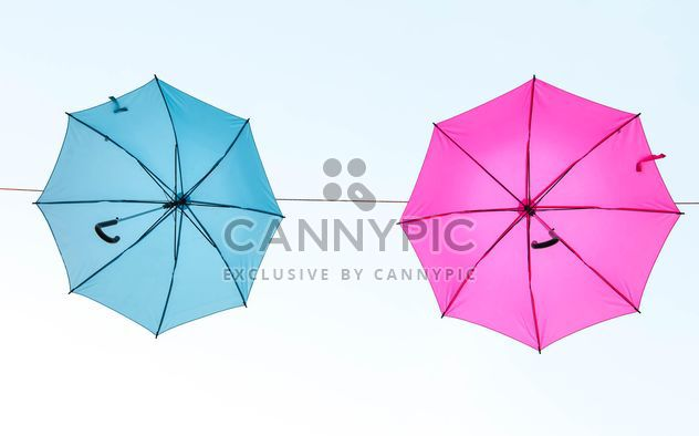 Blue and pink umbrellas hanging - image #273075 gratis