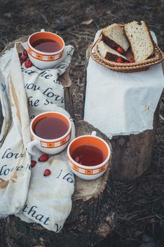Picnic on nature - image gratuit #273875