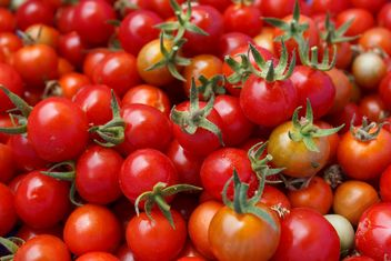 Pile of tomatoes - Free image #274865