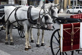 carriage drawn by two horses - image gratuit #275045