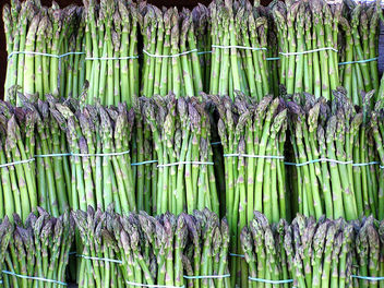 asparagus - Free image #275915