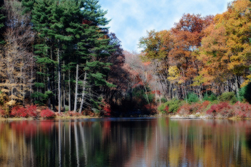 Autumn at the Lake - Kostenloses image #277665