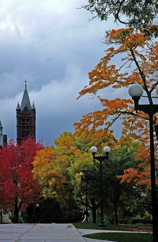 Autumn Arrives at Syracuse - Free image #278995
