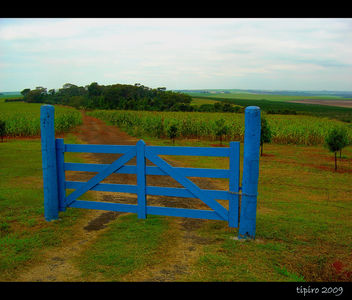 The Blue Gate - image gratuit #279935