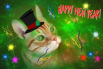 Happy New Year Everyone! - Kostenloses image #281405