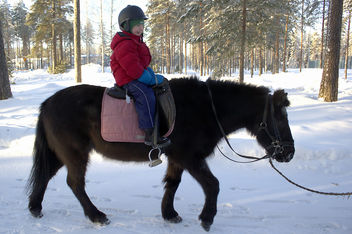 Leo's first time horseback riding. - image #281655 gratis