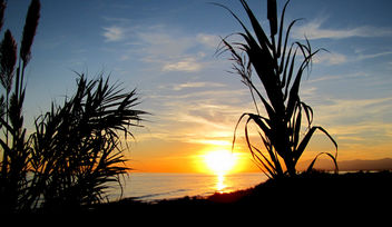 Sunset Marbella /Spain - image gratuit #285135