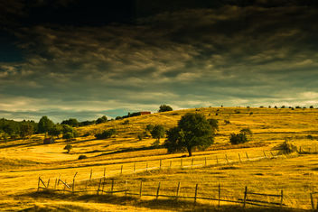 fields - 001 scenery - image gratuit #285335