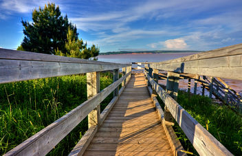 Hopewell Boardwalk - HDR - Free image #286705