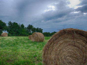 Stormy Sky Above Field - бесплатный image #286785