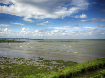 Oyster Farm On Utah Beach - image #286885 gratis