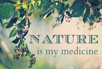 Nature is my medicine - Kostenloses image #288135