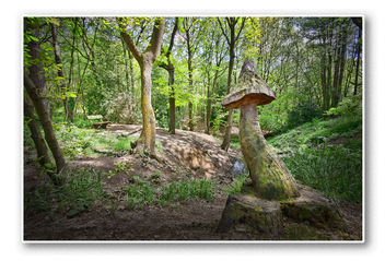 The seat and toadstool - image gratuit #288295