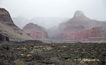 Grand Canyon National Park: Winter Fog From Tonto Platform 2169 - бесплатный image #290335