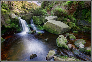 Black Clough Beck - Free image #292025