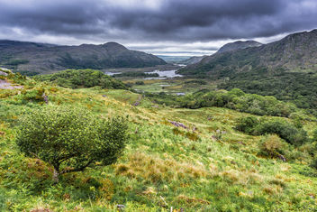 Ladies view, Derrycunihy, co. Kerry, Ireland - бесплатный image #292215