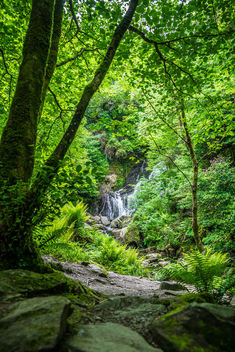 Torc waterfall, co. Kerry, Ireland - Free image #292235
