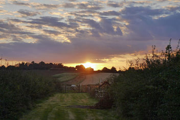 Sun Setting Over the Fields - Kostenloses image #293715