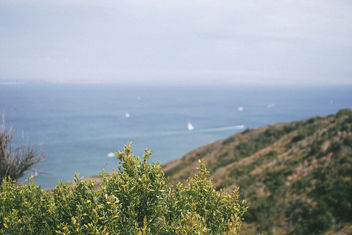 Distant Sails. - Free image #294585