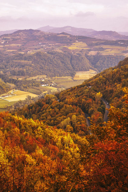 Autumn Landscape is ready. - Free image #294645