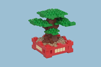 Bonsai Tree - Free image #296255
