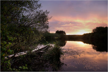 Beech tree lake sunrise - бесплатный image #298925