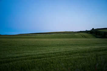 Fields at twilight - image gratuit #300255