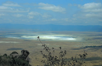 Tanzania (Ngorongoro) View of dried salt lake in Conservation Park from crater rim - бесплатный image #300835