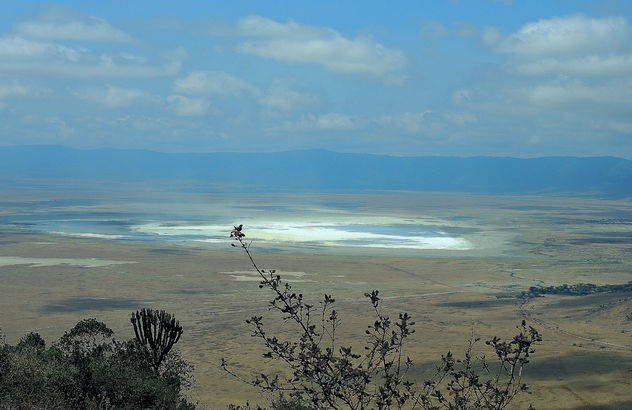 Tanzania (Ngorongoro) View of dried salt lake in Conservation Park from crater rim - Free image #300835