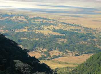 Tanzania (Ngorongoro) View of Ngrongoro conservation area from crater rim - Free image #300935
