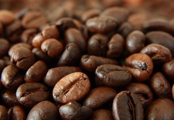 Roasted Coffee beans - image gratuit #302305